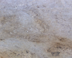 Kashmir Gold Light Granite
